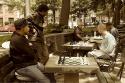 20090615post-checkmate