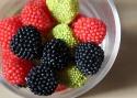 20091009post-berries