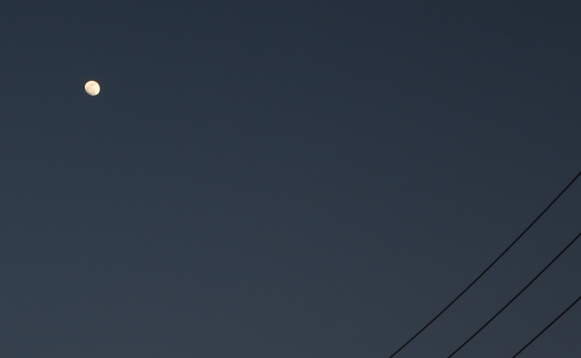 20140521-acrobats-20140511_8751L