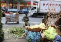 20140814post-new.york.minute-20140808_0160L