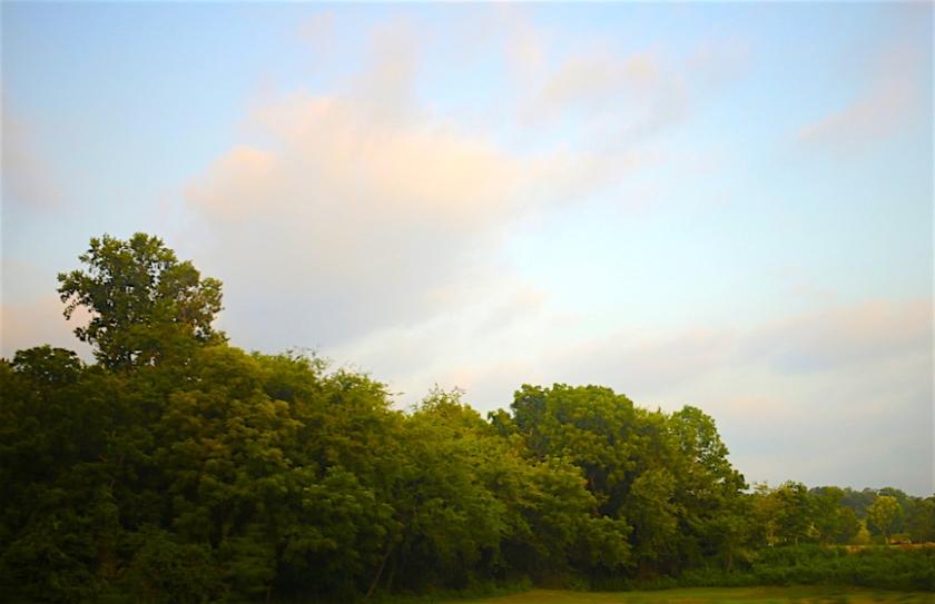 20160629post-greens.and.blues-20160626_4741L