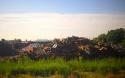 20161111post-rubble-20160607_9791l