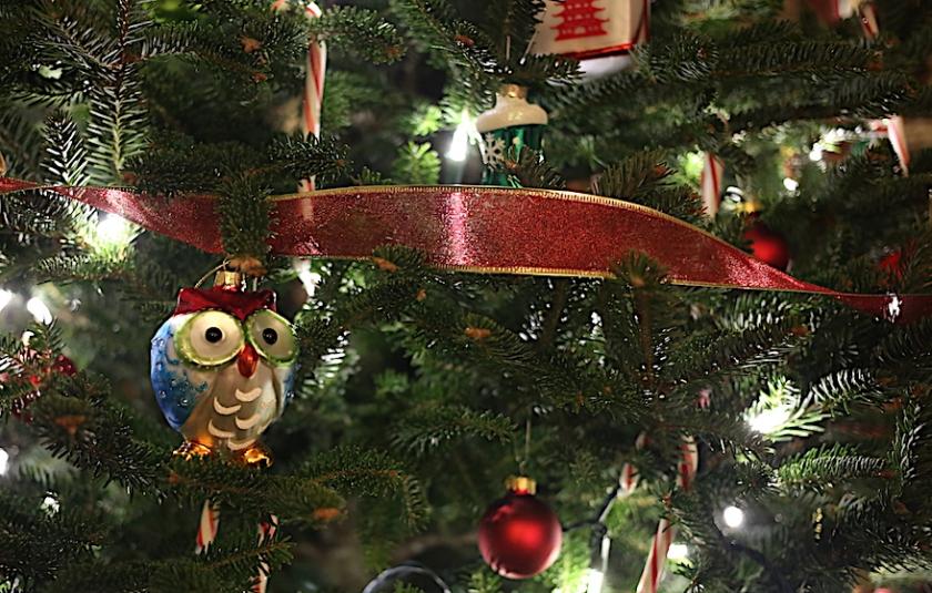 20161225post-owl-20141201_5748l