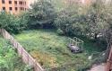 20211012post-overgrown-20211009_9912L