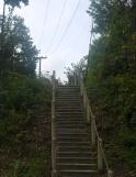 20211017post-steps-20211009_0645L